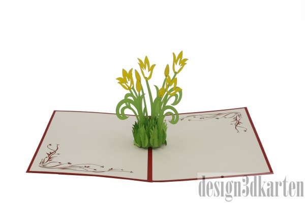 Tulpen von design3dkarten